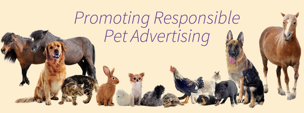 Promoting Responsible Pet Advertising