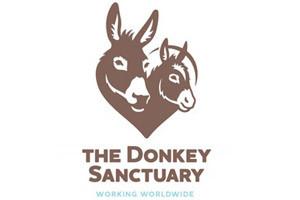 Donkey-Sanctuary